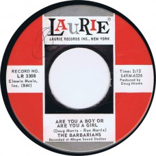 BARBARIANS Are You A Boy Or Are You A Girl / Take It Or Leave It (Laurie 3308) USA 1965 45