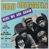 BEAU BRUMMELS Here We Are Again / Fine With Me / One Too Many Mornings / She Reigns (Warner Bros. Records ‎– EP 112) France 1966 PS EP