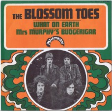 BLOSSOM TOES What On Earth / Mrs Murphy's Budgerigar (Marmalade 421 166) France 1967 PS 45