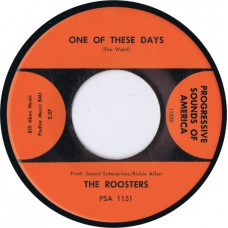 ROOSTERS One Of These Days / You Gotta Run (Progressive Sounds Of America PSA 1151) USA 1966 45