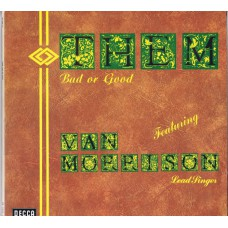 THEM Bad Or Good (Decca SD 3008/1-2) Germany 1973 compilation 2LP-set